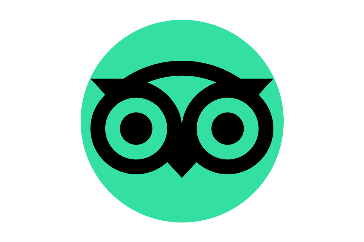 tripadvisor logo icon detail copia