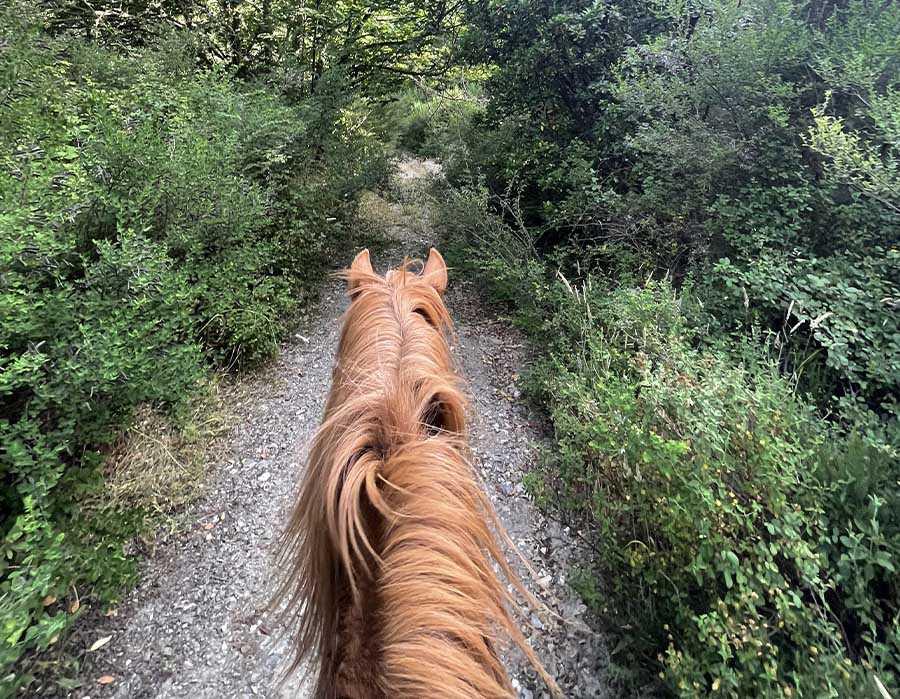 escursione a cavallo1