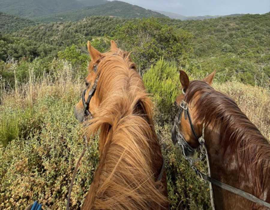 escursione a cavallo5